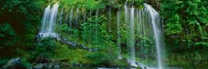 Hilos-de-agua-cayendo-por-la-ladera-de-la-pendiente-boscosa