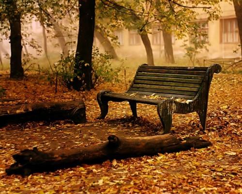 autumn-14_min14